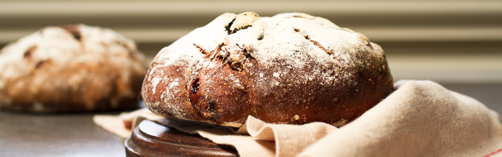 <p>Cocoa powder and sour cherries lend decadence to this rustic bread while Diced Dried Plums provide subtle sweetness. The bread complements a wide number of cheeses, including cream cheeses, chèvre, Gruyère, and pecorino. Because this bread dough incorporates a pre-fermented sponge, make the sponge a day ahead and refrigerate it overnight for best results.</p>