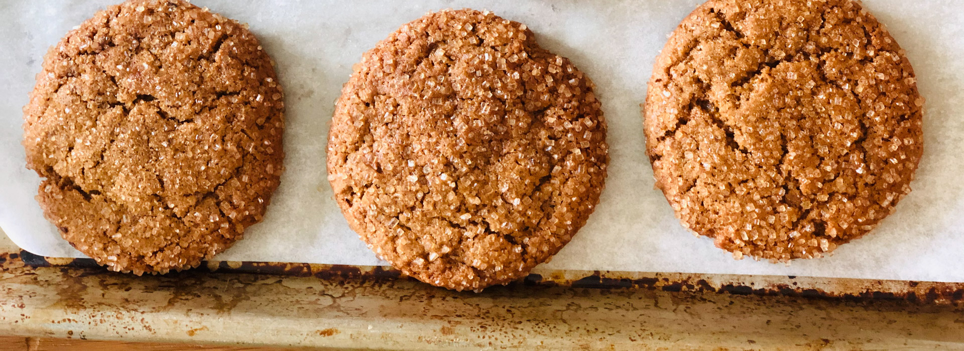 <p>Ginger spice comes through in these chewy vegan cookies made with dried plum puree, which takes the place of butter and eggs.</p>